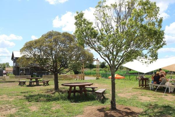 Kingfisher Garden