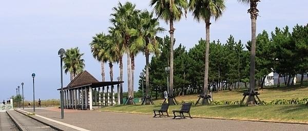 二色の浜公園 海浜緑地DAYキャンプエリア・ドッグフリーDAYキャンプエリア