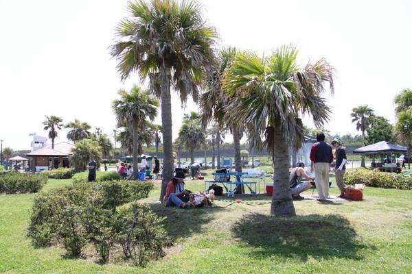 みやざき臨海公園 サンビーチ一ツ葉