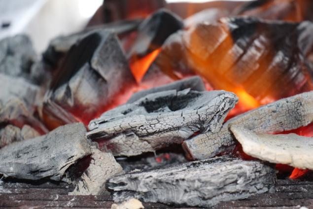 BBQにおすすめの炭はこれだ